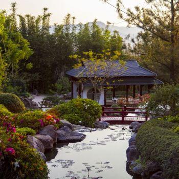 Zen Paradise