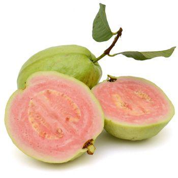 Hibiscus Guava Fresca (type)