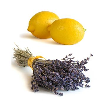 Lemon Lavender (type)